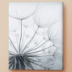 Finding Beauty In Small Things Canvas Print $59.99
