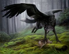 Wolves | Winged wolf with wings hunting rabbit (Hioshiru by Atenebris.deviantart.com on @DeviantArt)