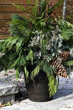 Shopper's Diary: Centro Garden in Ontario - Remodelista Christmas Urns, Christmas Planters, Christmas Front Doors, Christmas Greenery, Outdoor Christmas Decorations, Christmas Design, Country Christmas, Winter Christmas, Xmas