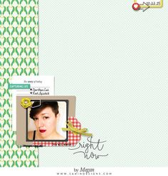 Scrapbook Inspiration   Sahin Designs   Daybook Collection #scrapbook #everyday