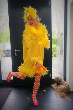 Ein farbenfrohes Kostüm mit Lichterkette! DIY Bibo aus der Sesamstraße. Schnell und einfach, auch last minute tauglich. #DIYKostüme #DIYcostume #Damenkostüm #Faschingkostüm #selbstgemacht #havefun #cologneforever #köllealaaf