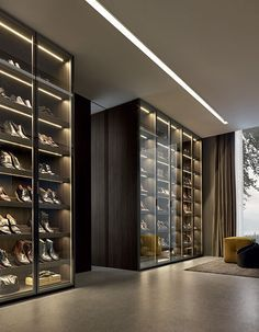 Poliform closet system, shoe storage, shelving with interior cabinet lighting and glass doors