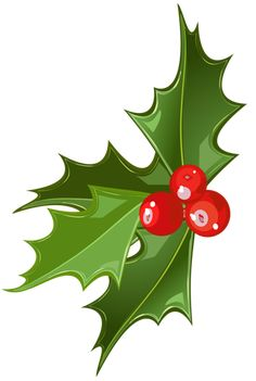 Mistletoe is a tradition for Christmas in many countries. It is also traditional to kiss underneath it but many people do not know what started this tradition and why we do it. The word mistletoe was derived form anglo-saxon words. The word mistel meant dung and tan meant twig. [...]