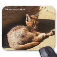 Caracal African Wild Cat Wildlife Supporter Mousepad