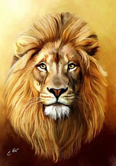 Lion Art Print by Ellens Art. All prints are professionally printed, packaged, and shipped within 3 - 4 business days. Choose from multiple sizes and hundreds of frame and mat options. art with mat Lion Art Print by Ellens Art Animal Paintings, Animal Drawings, Art Drawings, Lion Sketch, Pinturas Disney, Lion Drawing, Beautiful Lion, Lion Painting, Lion Wallpaper