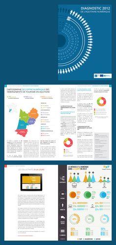 Diagnostic 2012 de l'aquitaine numérique  #infographic #datavisualisation #book