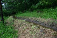 permaculture | Permaculture Research: What is Permaculture Swale Design | The Clever ...