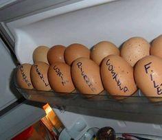 Canadauence TV: Dilma manda a população trocar a carne pelo ovo, a...