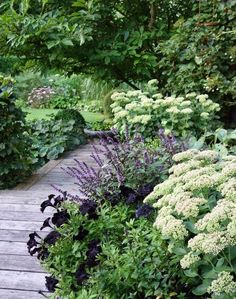 Best Free of Charge Shade Garden landscaping Strategies If the yard is stuffed with large shade trees, it's already quite a job to build sun-loving plants Garden Borders, Garden Paths, Garden Beds, Back Gardens, Outdoor Gardens, Vertical Gardens, Small Gardens, The Secret Garden, Garden Cottage