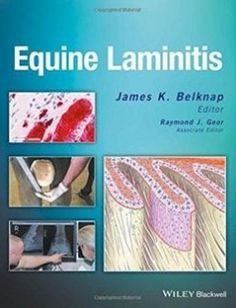 Equine Laminitis free download by James K. Belknap Raymond J. Geor ISBN: 9781119944713 with BooksBob. Fast and free eBooks download.  The post Equine Laminitis Free Download appeared first on Booksbob.com.