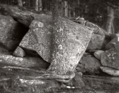 """https://flic.kr/p/BS3uzF 