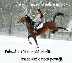 Pokud se tě to snaží shodit . Bff, Horses, Draw, Humor, Funny, Quotes, Animals, Quotations, Animales