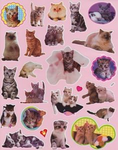 Old skool kitty stickers. This was basically my childhod. Space Ghost, Room Posters, Poster Wall, Photo Wall Collage, Collage Art, Crazy Cat Lady, Crazy Cats, Kawaii, Cat Stickers