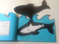 Ocean Food Chain!: book