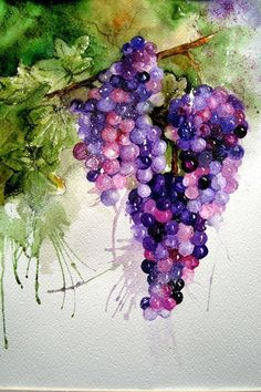 Everything You Need To Know About How To Use Watercolor Painting Watercolor Fruit, Watercolor And Ink, Watercolour Painting, Watercolor Flowers, Watercolours, Grape Painting, Fruit Painting, China Painting, Papier Paint