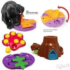 Dog Toy Puzzle Games. Challenge and treat your dog.
