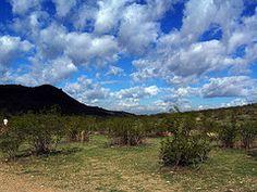 Beautiful Arizona sky.
