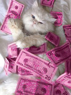 Dinero kawai
