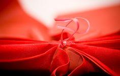 https://flic.kr/p/4nRQGB | Macro Morning - Red Ribbon | Red Ribbon Macro  TerraVox