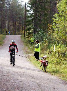 Canicross Kajaani Sep 2014 www.korpimaa.fi