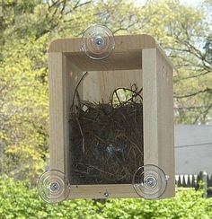 Window Nesting Box. Watch what happens inside a bird's nest. You can see the birds, but they can't see you. We had one for the kids while they were growing up & it was such a great way to enjoy nature & help them learn about birds.