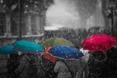 Umbrellas by Dmitri Yakovlev on 500px