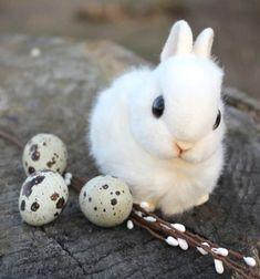 Lifelike fluffy bunny toy - Easter decor (free sewing pattern) // Élethű plüss nyuszi - húsvéti dekoráció (ingyenes szabásminta) // Mindy - craft tutorial collection // #crafts #DIY #craftTutorial #tutorial