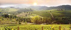 tuscany, italy chianti