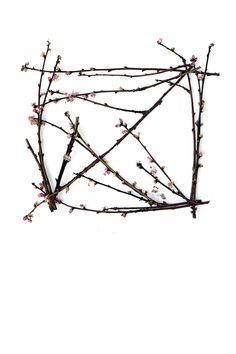 almond blossom box (mary jo hoffman)