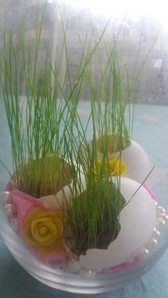 Pääsiäisruohoa munankuoressa