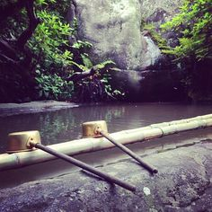 手水 #30jidori @ 八坂神社 instagram.com/p/aU6s71RiJ1/