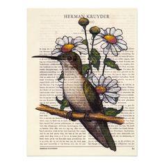 Hummingbird Art Print on Vintage Dutch Book Page: Cards: Available at ...