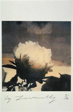 Cy Twombly. // I love this image. There was a big poster of it in the Mayle store that I coveted.