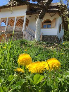 Minunăție de casă în zona Câmpulung | Adela Pârvu - Interior design blogger Smell Of Rain, Love People, The Fresh, Interior, Plants, Romania, Lost, Design, Self