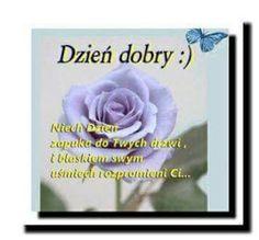 Dla każdego: DZIEŃ DOBRY Rose, Flowers, Plants, Ha Ha, Facebook, Good Morning Funny, Pink, Funny Stuff, Wtf Funny