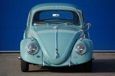 Love The Bug :)