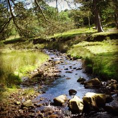 One of my favourite places the Trough of Bowland, Lancashire