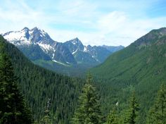 Barlow Point (Mountain Loop) - a great hike for kids and dogs.