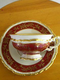 Bavarian Tea Cup And Saucer