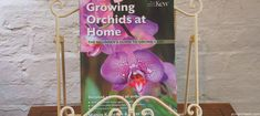Book Review & Competition - Growing Orchids at Home - Pumpkin Beth Vanda Orchids, Types Of Orchids, Growing Orchids, Gardening Books, Orchid Care, Book Reviews, Botanical Gardens, Indoor Plants, House Plants