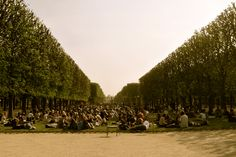 Chill afternoon at Jardin Luxembourg