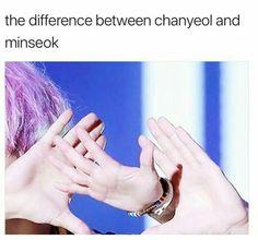 EXO cute hands // that looks. so wrong Exo Ot12, Kaisoo, Chanbaek, K Pop, Funny Kpop Memes, Exo Memes, Baekhyun, Exo Facts, Korea