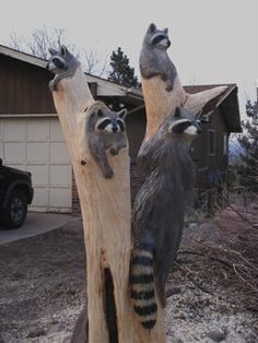 Raccoon Chainsaw Carvings Wood Carving Art Tree