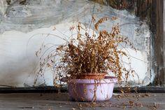 """Exposição """"Contratempo"""" de Catarina Botelho,  na Galeria Mercedes Viegas. #FotoRio #photography #art"""