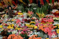 Cape Town flower- sellers located in Adderly street, South Africa Cape Town Tourism, Flora Flowers, Cape Town South Africa, Kwazulu Natal, Victoria Falls, Holiday Deals, Beautiful Places To Travel, Flower Market, Places To See