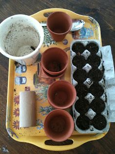 Use egg cartons for planting seeds Eco Garden, Recycled Garden, Garden Pests, Lawn And Garden, What To Plant When, Bloom Where Youre Planted, Mini Farm, Growing Seeds, Vegetable Garden