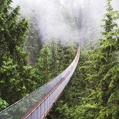 The fog setting on Capilano Suspension Bridge,downtown Vancouver