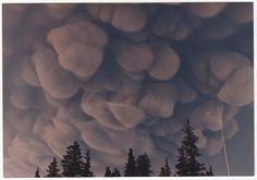 Augustine ash cloud by Thren09, via Flickr