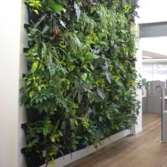 Plant wall.  Would be cool in the house.