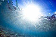 Excelentes fotos submarinas de http://www.marktipple.com/ #surf